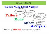FAILURE MODES EFFECTS ANALYSIS (FMEA)