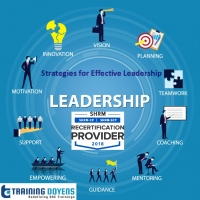 Strategies for Effective Leadership: How to Influence, Inspire, Motivate and Lead others