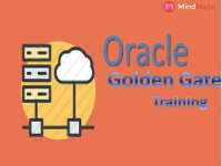 The Best Oracle GoldenGate Training (100% Practical ... - Mindmajix