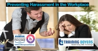 Harassment, Bullying, Gossip, Confrontational and Disruptive Behavior: A Manager's Guide on How to Detox and Neutralize a Negative Workplace – Training Doyens