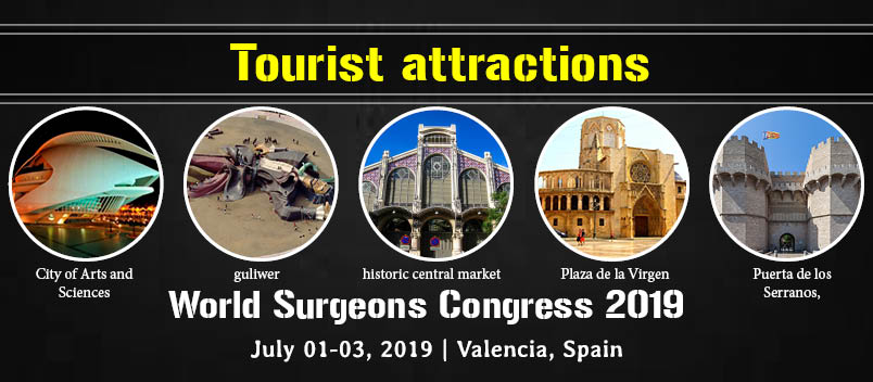 8th Edition of International Conference and Exhibition on  Surgery and Transplantation, Valencia, Spain
