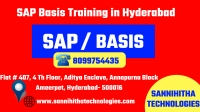 SAP Basis Training in Hyderabad