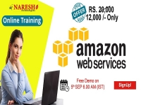 AWS Online Training in USA - NareshIT