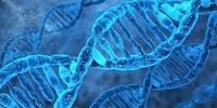 International Conference on Bioinformatics & System Biology
