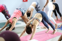 Yoga Teacher Training in India