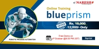 RPA Blue Prism Online Training in USA - NareshIT