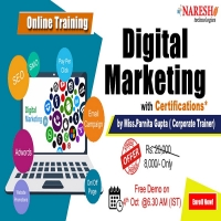 Digital Marketing Online Training in USA - NareshIT