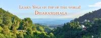200 & 300 Hours Yoga Training in Dharamshala at Shree Hari Yoga