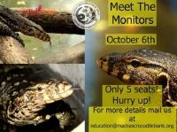 Meet the Monitors | Entryeticket