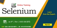 Best Selenium Online Training in USA - NareshIT