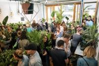 Huge Indoor Plant Warehouse Sale - Rare Plant Party - Melbourne