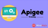 Accelerate Your Career With Apigee Training