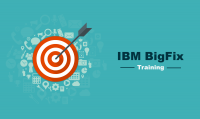 IBM BigFix Training in India & USA - FREE DEMO