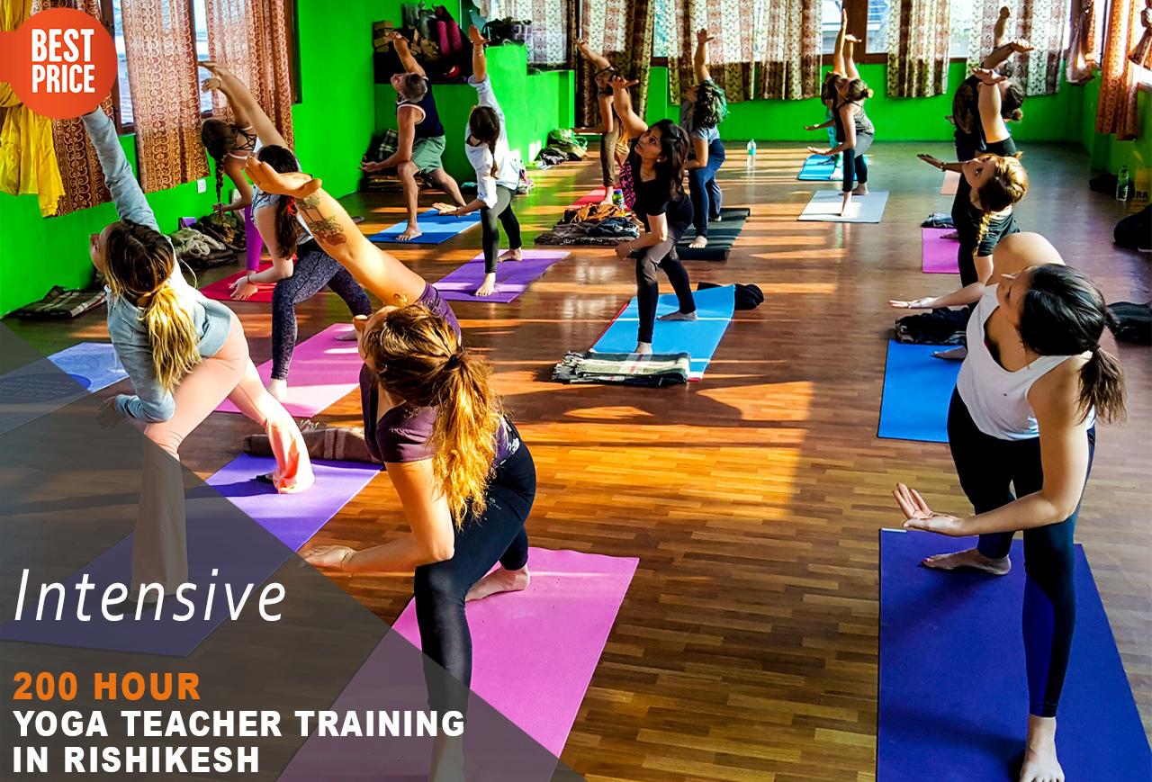 200 Hour Yoga Teacher Training in Rishikesh RYS200 (February), Rishikesh, Uttarakhand, India