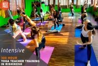 300 Hour Yoga Teacher Training in Rishikesh RYS300 (February)