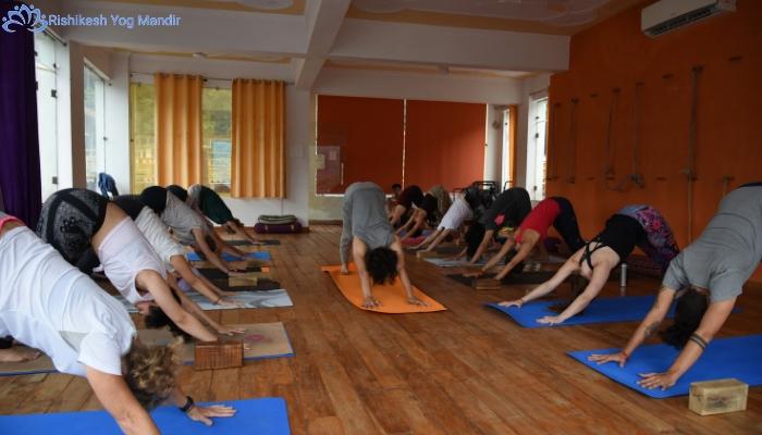 Best 200 hour yoga teacher training in Rishikesh, Dehradun, Uttarakhand, India