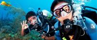 Scuba Diving In Goa