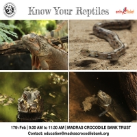 Know Your Reptiles on 2019 - Entryeticket