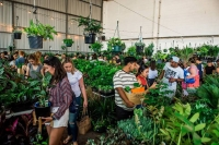 Adelaide - Rare Plant Party En Blanc