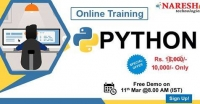 Best Python Online Training Institute in USA - Naresh IT
