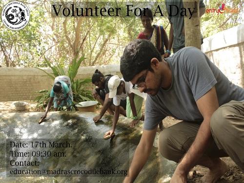 Volunteer For A Day in Chennai- Entryeticket, Chennai, Tamil Nadu, India