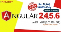 Best Institute for Learning Angular Js Online Training course in USA -
