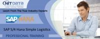 SAP Simple Logistics Online Training in Hyderabad