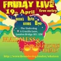 A Night of Psychedelic Rock and Stoner Punk with Madmess and Trevor's Head