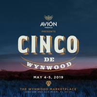 Cinco de Mayo at The Wynwood Market Place in Miami - May 2019