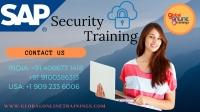 SAP Security Training | SAP Security Online Training - GOT