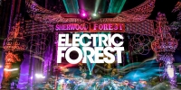 Electric Forest Festival - 4 Days Passes