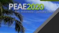 2020 2nd International Conference on Power Engineering and Automation Engineering (PEAE 2020)