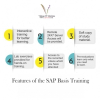 Online SAP Basis Training Courses in India | SAPVITS | what is SAP Basis