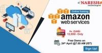 Best Software Online Course- NareshIt