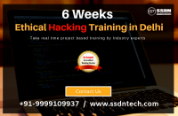 Take 6 Weeks Ethical Hacking Course in Delhi (Paid Training)