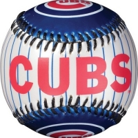 Chicago Cubs vs New York Mets Match Tickets