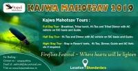 Kajwa Mahotsav at Bhandardara – The Festival of Millions of Fireflies