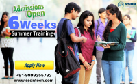 Take 6 Weeks Industrial Training in Noida (Paid Training)