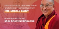 The Subtle Body: Chakras, Channels, Winds and Drops in Tibetan Buddhism