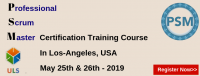 PSM Certification Training Course in Los-Angeles, USA.