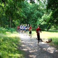 Belhus Woods Country Park 10K - Saturday 8 June 2019