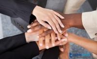 Improving Employee Engagement through Structured Mentoring