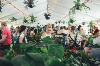 Brisbane - Huge Indoor Plant Warehouse Sale - Pet Friendly Focus