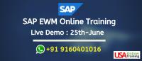 SAP EWM Online Training Live Demo