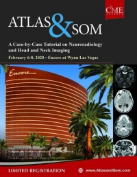 Atlas and Som: A Case Tutorial on Neuroradiology and Head and Neck Imaging