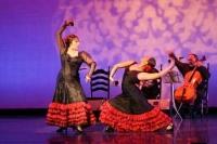 Carolina Lugo's & Carolé Acuña's Ballet Flamenco present Company In Concert