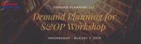Demand Planning for S&OP Workshops