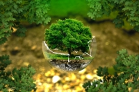 International Conference on Ecocriticism and Environmental Studies