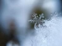 Royal Geographical Society (with IBG) Christmas quiz