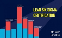 KPMG Lean Six Sigma Green Belt Training in Ahmedabad